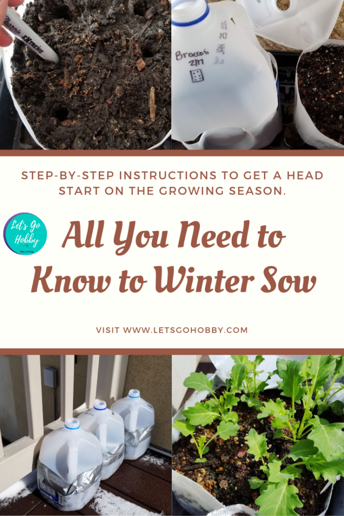 How to winter sow. Winter Sowing.