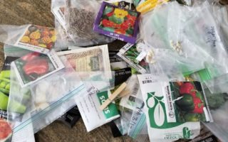 Organizing Gardening seed packs