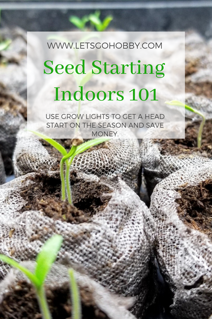 How to start seeds under grow lights indoors